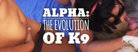 Alpha: The Evolution of K9