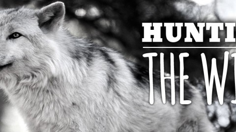 Hunting the Wild: Bringing Pet People Into the Fold