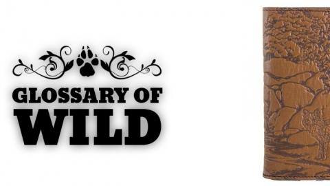 Glossary of Wild