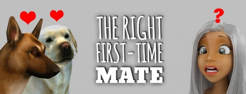 Selecting a First-Time Mate