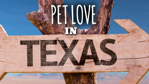 Pet Love in Texas