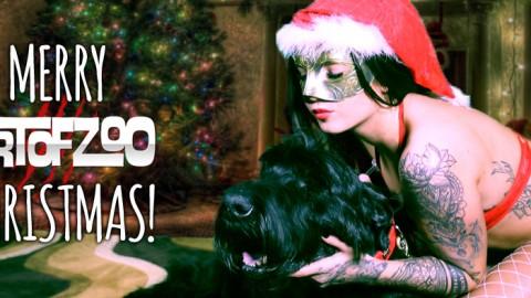 ArtOfZoo Christmas Update 2018